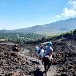 Paardrijden Etna Nord - Piano Provenzana
