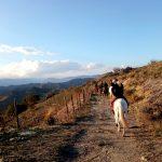 Paardrijden Linguaglossa - Etna Nord