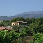 Tenuta Madonnina met uitzicht op de Etna